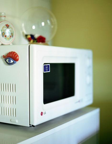 iv.sandor-microwelleEAjtay