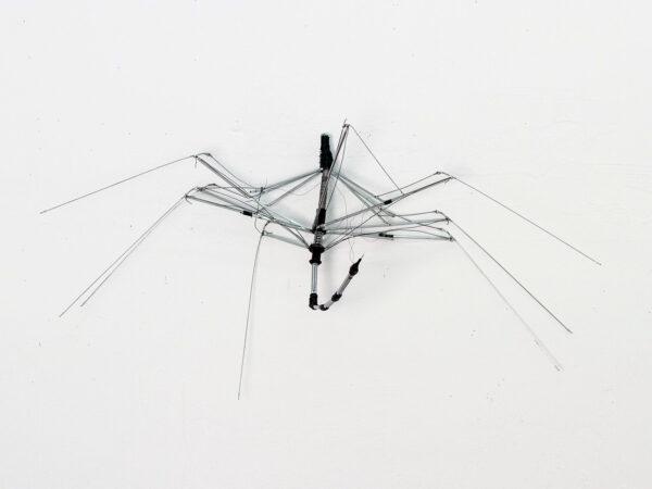metamorphosen-RI-1213-01-Ajtay