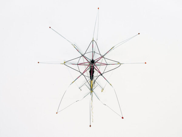 metamorphosen-RI-1516-09-Ajtay